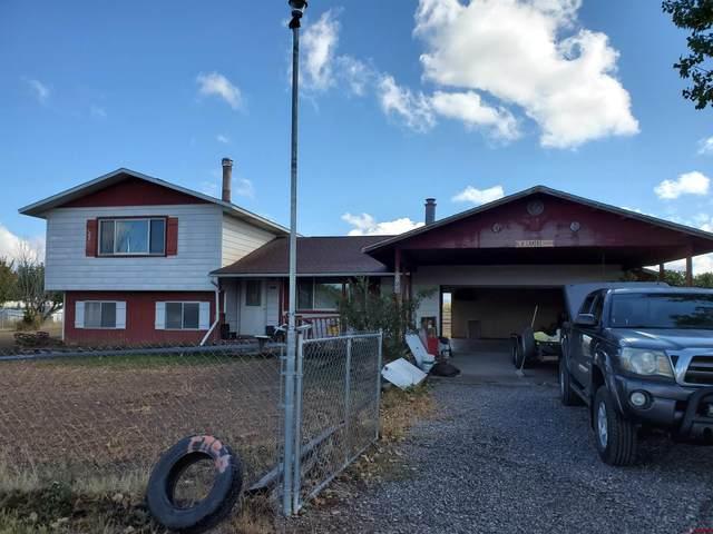 8900 6095 Road, Montrose, CO 81401 (MLS #787864) :: The Howe Group | Keller Williams Colorado West Realty
