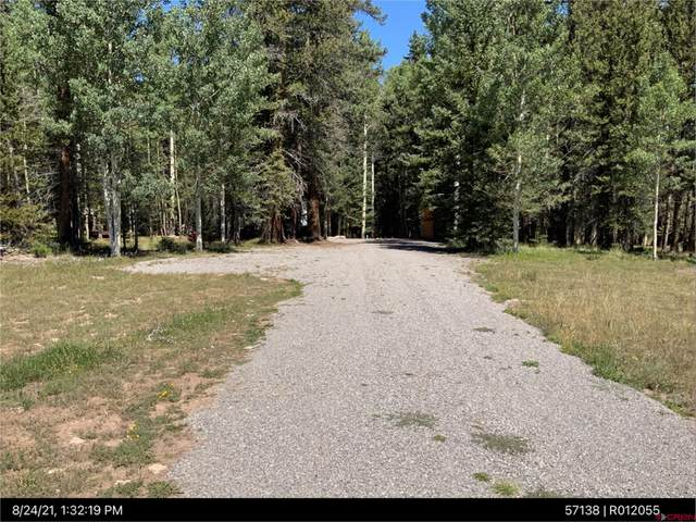 160 Lake Road, Cimarron, CO 81220 (MLS #787869) :: The Howe Group | Keller Williams Colorado West Realty