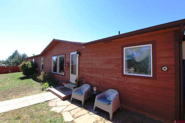 115 Pine Ridge Road, Durango, CO 81301 (MLS #787887) :: Durango Mountain Realty