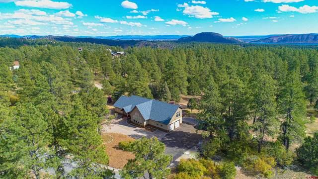 180 Ridge Road, Durango, CO 81303 (MLS #787888) :: Durango Mountain Realty