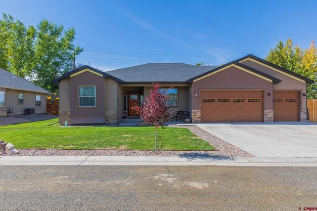 13881 6355 Lane, Montrose, CO 81403 (MLS #787893) :: The Howe Group | Keller Williams Colorado West Realty