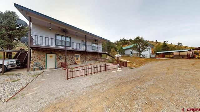 1525 S Highway 550, Durango, CO 81303 (MLS #787896) :: Durango Mountain Realty