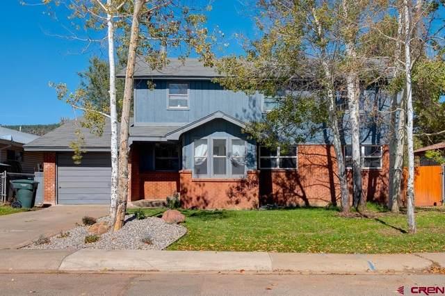 707 Ford Drive, Durango, CO 81301 (MLS #787942) :: Durango Mountain Realty