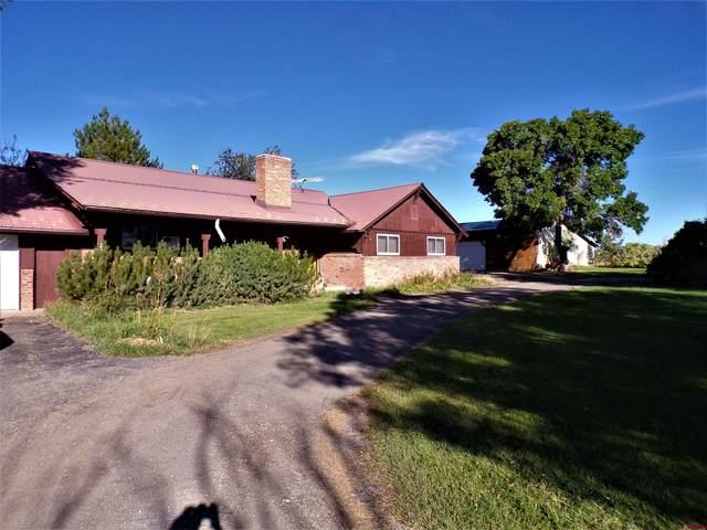 793 County Road 104, Hesperus, CO 81326 (MLS #787957) :: Durango Mountain Realty