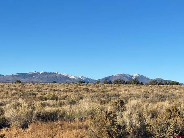 3433 Cr 119, Hesperus, CO 81326 (MLS #787960) :: Durango Mountain Realty