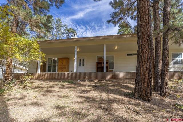 216 Lake View, Bayfield, CO 81122 (MLS #788071) :: The Howe Group | Keller Williams Colorado West Realty