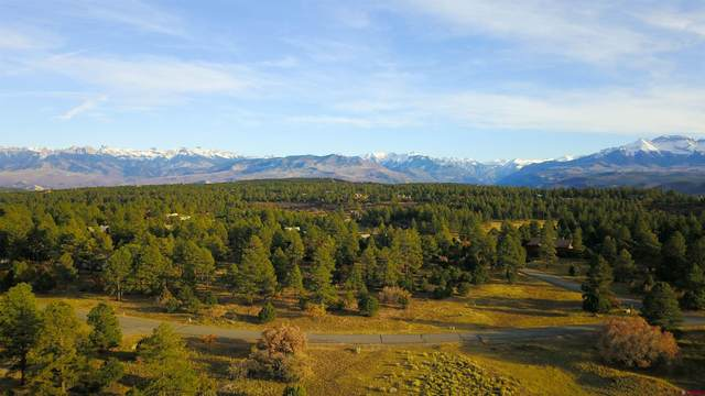 (Lot 320) Tbd Bear Cub Drive, Ridgway, CO 81432 (MLS #788073) :: The Howe Group | Keller Williams Colorado West Realty