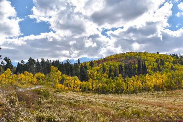 tbd Aspen Drive, Ridgway, CO 81432 (MLS #788075) :: The Howe Group | Keller Williams Colorado West Realty