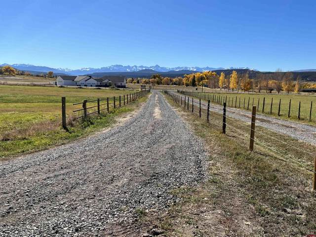 21750 Uncompahgre Road, Montrose, CO 81403 (MLS #788096) :: The Howe Group | Keller Williams Colorado West Realty