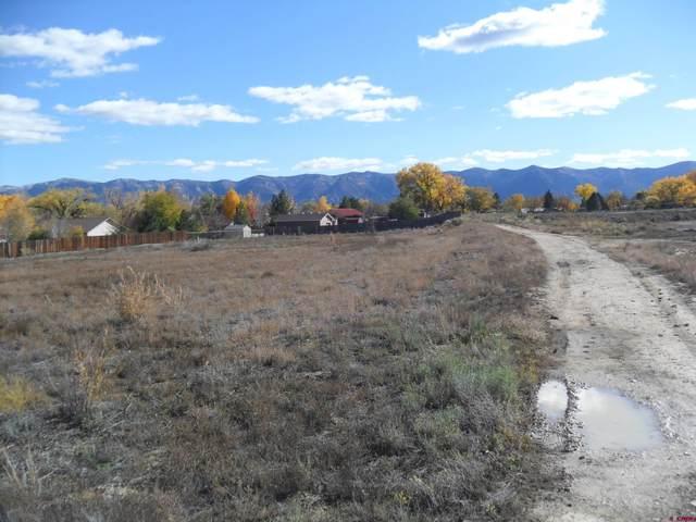 TBD Tucker Lane, Cortez, CO 81321 (MLS #788178) :: The Howe Group | Keller Williams Colorado West Realty