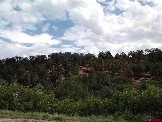 TBD Lot 18 Juniper Drive, Norwood, CO 81423 (MLS #788180) :: The Howe Group | Keller Williams Colorado West Realty