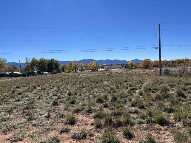 1331 Twenty Mule Team Drive, Cortez, CO 81321 (MLS #788189) :: The Howe Group | Keller Williams Colorado West Realty