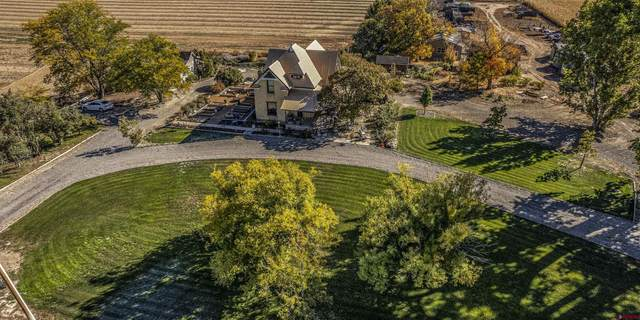 3442 5400 Road, Delta, CO 81416 (MLS #788191) :: The Howe Group | Keller Williams Colorado West Realty