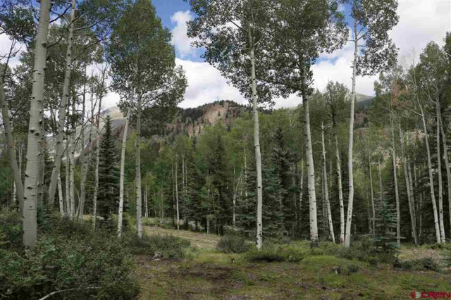 5 Alpine Vista Way, Lake City, CO 81235 (MLS #1071) :: The Howe Group | Keller Williams Colorado West Realty
