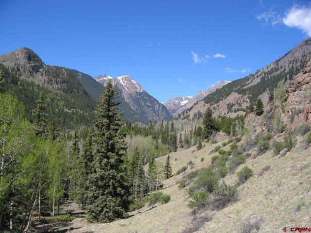 112 Alder Lane, Lake City, CO 81235 (MLS #4133) :: The Howe Group | Keller Williams Colorado West Realty