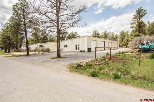 333 Bastille Drive, Pagosa Springs, CO 81147 (MLS #705762) :: CapRock Real Estate, LLC