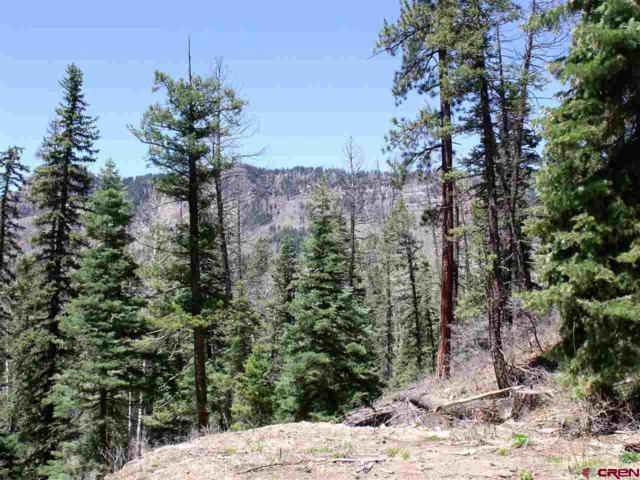 137 Ponderosa Way, Durango, CO 81301 (MLS #705868) :: Durango Mountain Realty