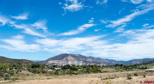 40254 Sunridge Court, Paonia, CO 81428 (MLS #711489) :: CapRock Real Estate, LLC