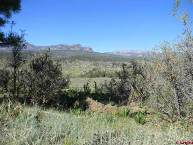 235 Mary's Court, Pagosa Springs, CO 81147 (MLS #715785) :: Durango Home Sales