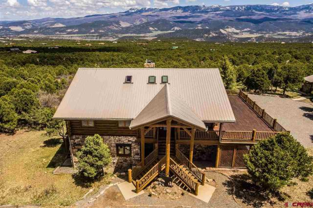 751 Pine Drive, Ridgway, CO 81432 (MLS #715832) :: Durango Home Sales