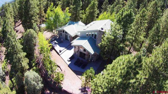 165 Glenn Drive, Durango, CO 81301 (MLS #724319) :: Durango Mountain Realty