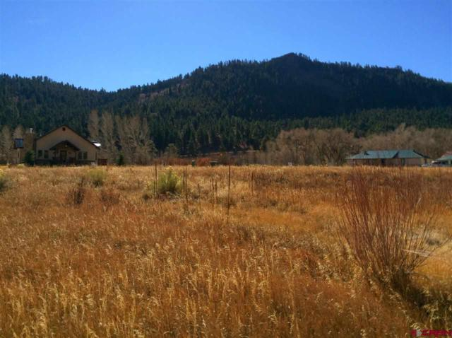 0371 Sawmill Street, South Fork, CO 81154 (MLS #726037) :: CapRock Real Estate, LLC