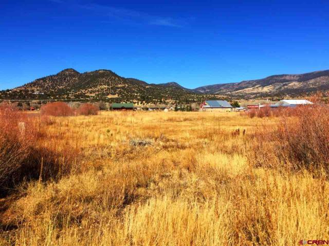 1 Jackson Street, South Fork, CO 81154 (MLS #726042) :: Durango Home Sales