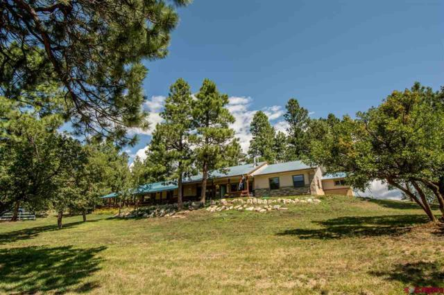 251 Royal Elk Pl, Pagosa Springs, CO 81147 (MLS #728019) :: Durango Home Sales