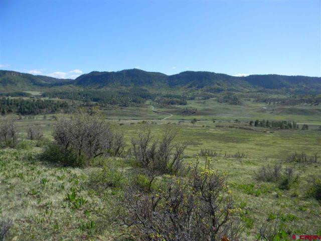 764 Irwin Pl, Chromo, CO 81147 (MLS #729097) :: Durango Home Sales