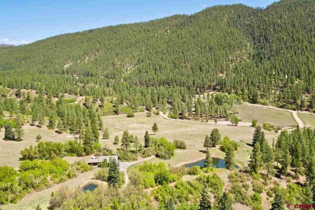 147 Sunrise Lane, Durango, CO 81301 (MLS #730055) :: CapRock Real Estate, LLC
