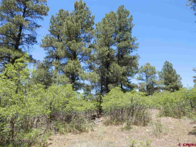 1094 Cr 600, Pagosa Springs, CO 81147 (MLS #730207) :: The Dawn Howe Group | Keller Williams Colorado West Realty