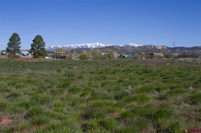 30616 Hwy 160, Durango, CO 81301 (MLS #730318) :: Durango Mountain Realty