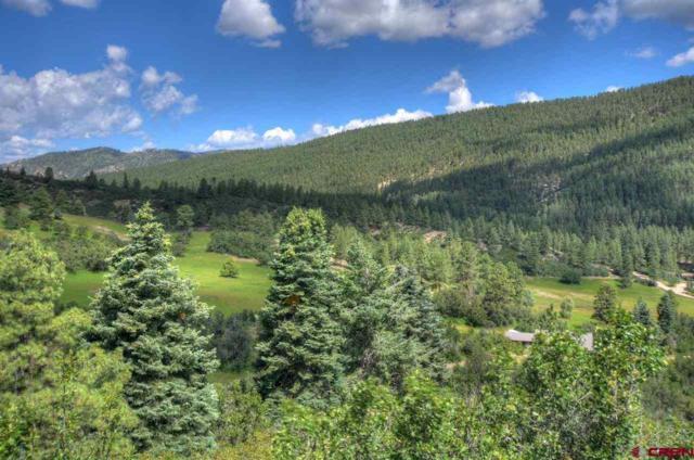 147 Sunrise Lane, Durango, CO 81301 (MLS #730817) :: Durango Home Sales