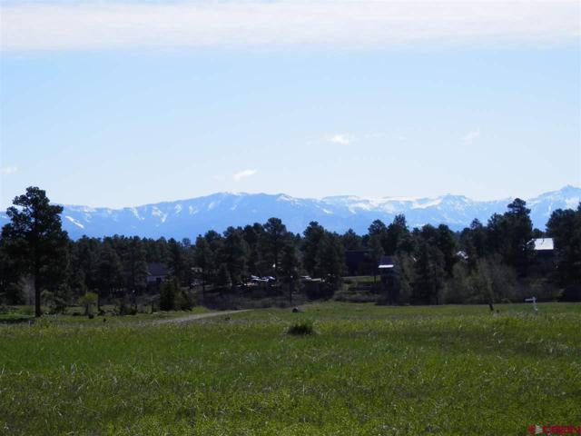 1578 Antelope Avenue, Pagosa Springs, CO 81147 (MLS #731346) :: CapRock Real Estate, LLC