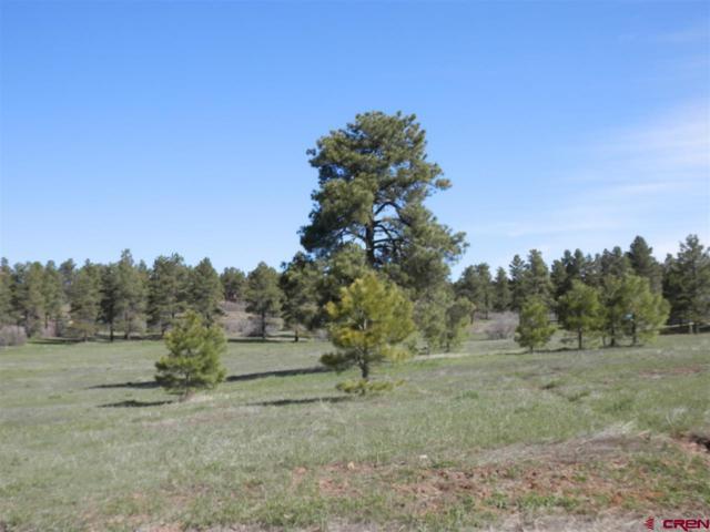 1148 Antelope Avenue, Pagosa Springs, CO 81147 (MLS #731348) :: CapRock Real Estate, LLC