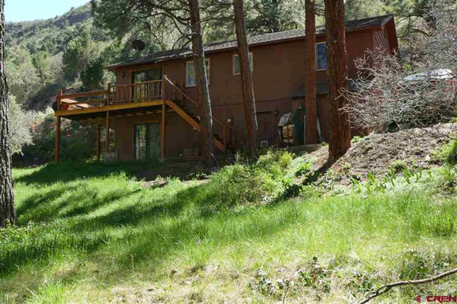 336 Pine Ridge Drive, Ridgway, CO 81432 (MLS #731698) :: CapRock Real Estate, LLC
