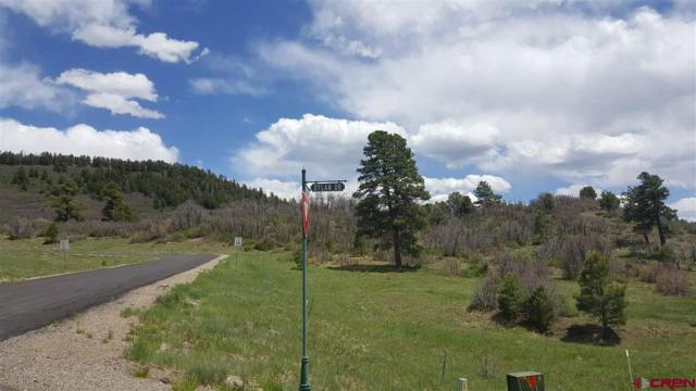 84,96,114 Dylan Drive, Pagosa Springs, CO 81147 (MLS #732928) :: Durango Home Sales