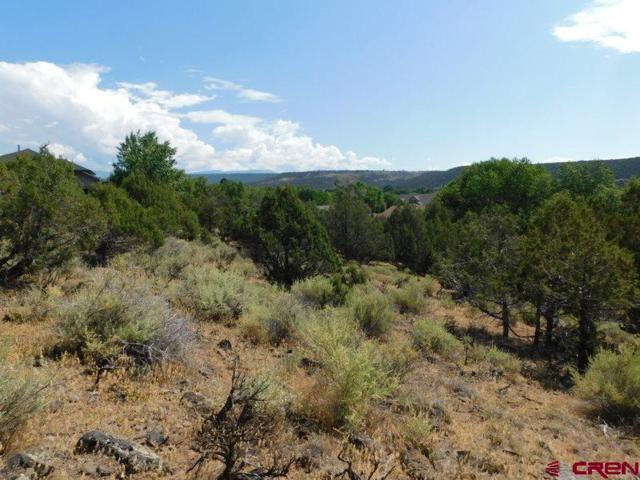 240 Flintlock Court, Cedaredge, CO 81413 (MLS #735358) :: Durango Home Sales