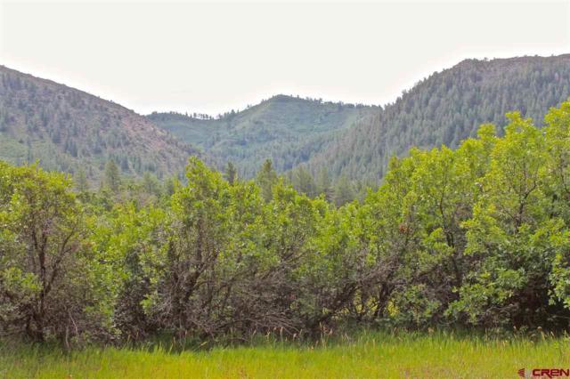 61 Edgemont Meadows Road, Durango, CO 81301 (MLS #735816) :: The Dawn Howe Group | Keller Williams Colorado West Realty
