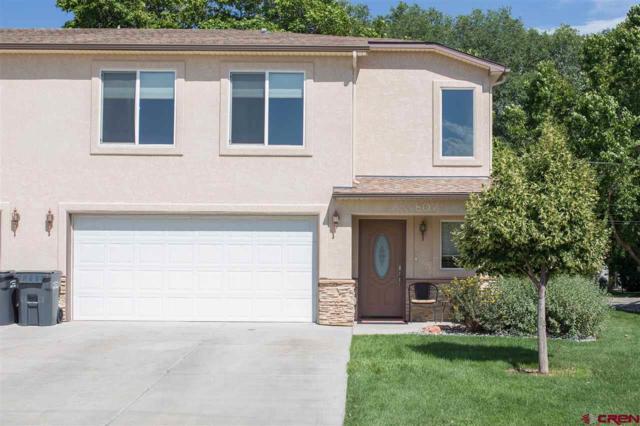 807 Montclair Drive, Palisade, CO 81526 (MLS #737514) :: CapRock Real Estate, LLC