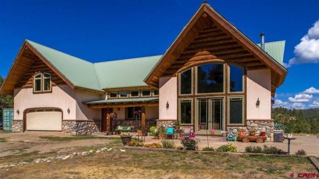 5419 County Road 502, Bayfield, CO 81122 (MLS #737852) :: Durango Home Sales