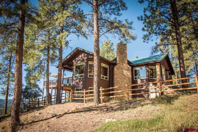 38 Painted Elk Drive, Chromo, CO 81128 (MLS #737997) :: CapRock Real Estate, LLC