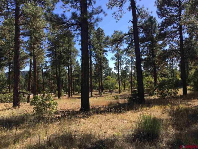TBD Edgemont Highlands Drive, Durango, CO 81301 (MLS #738090) :: Durango Mountain Realty
