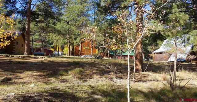 253 Fir Drive, South Fork, CO 81154 (MLS #738497) :: Durango Home Sales