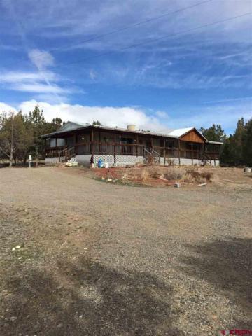 17469 St. Hwy 151, Arboles, CO 81121 (MLS #739063) :: Durango Home Sales