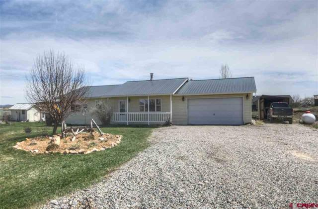 145 Cr 312, Oxford, CO 81137 (MLS #739844) :: Durango Mountain Realty
