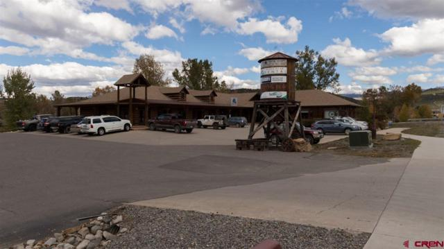 257 Sherman Street, Ridgway, CO 81432 (MLS #739943) :: The Dawn Howe Group | Keller Williams Colorado West Realty