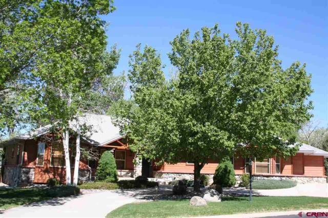 1360 SE Stonebridge Drive, Cedaredge, CO 81413 (MLS #740061) :: Durango Home Sales