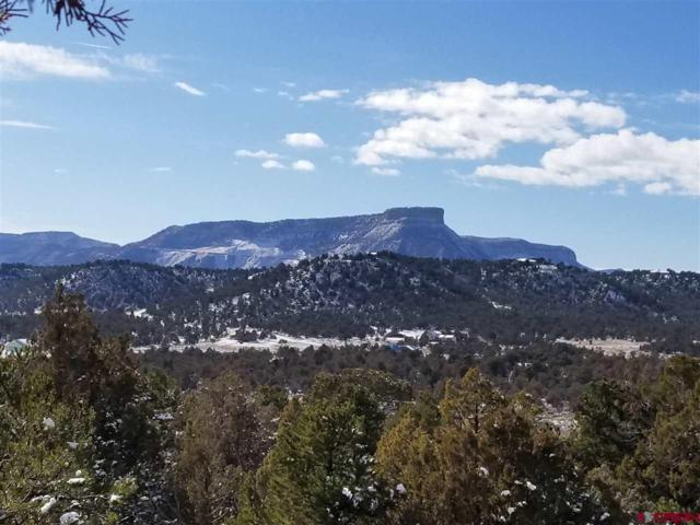 10300 Rd 36.7, Mancos, CO 81328 (MLS #740560) :: Durango Home Sales