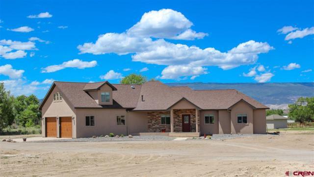 7097 Archway Road, Delta, CO 81416 (MLS #740584) :: Durango Home Sales